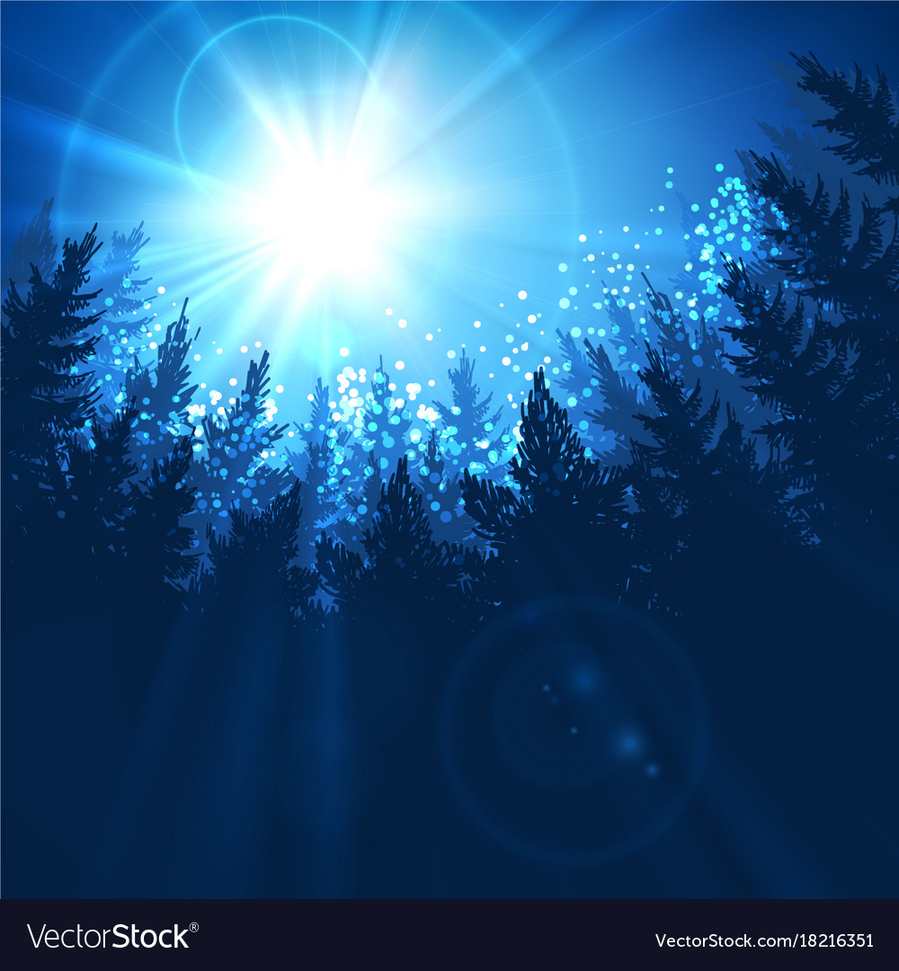 Pine forest background vector image