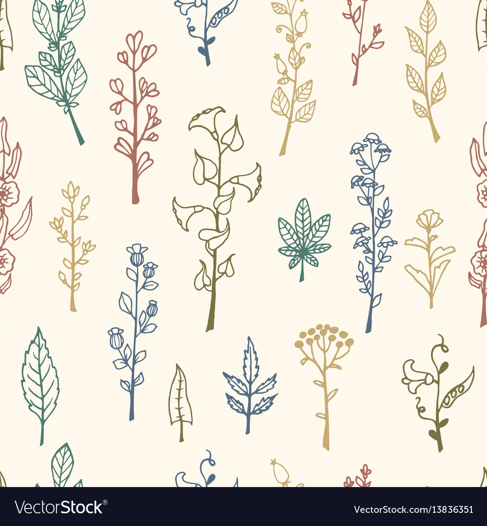 Seamless pattern with doodle herbs and flowers