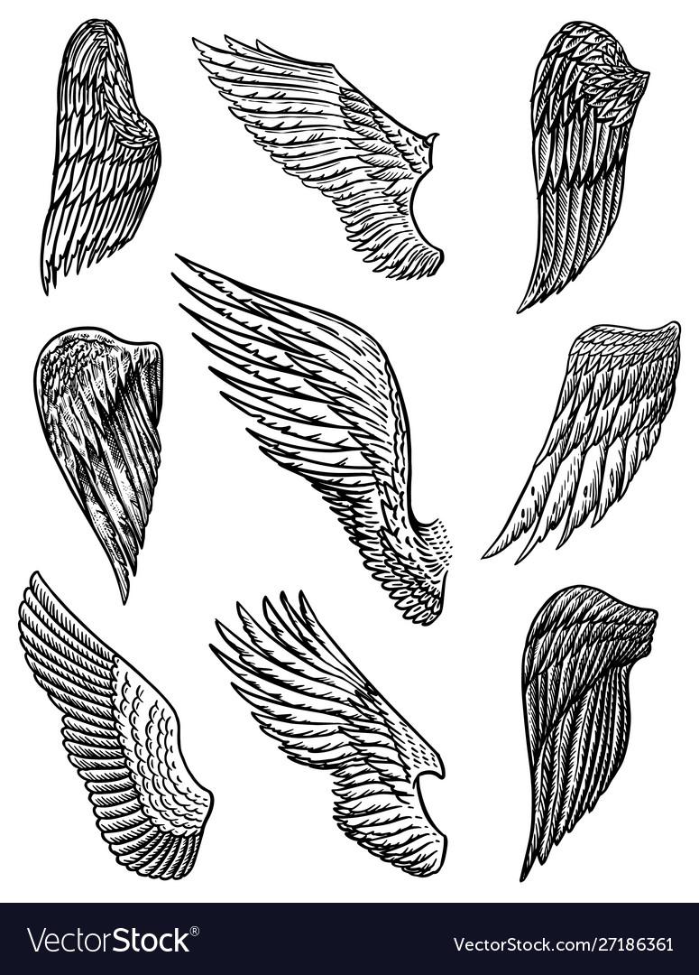 Angel Wings In Vintage Style Template