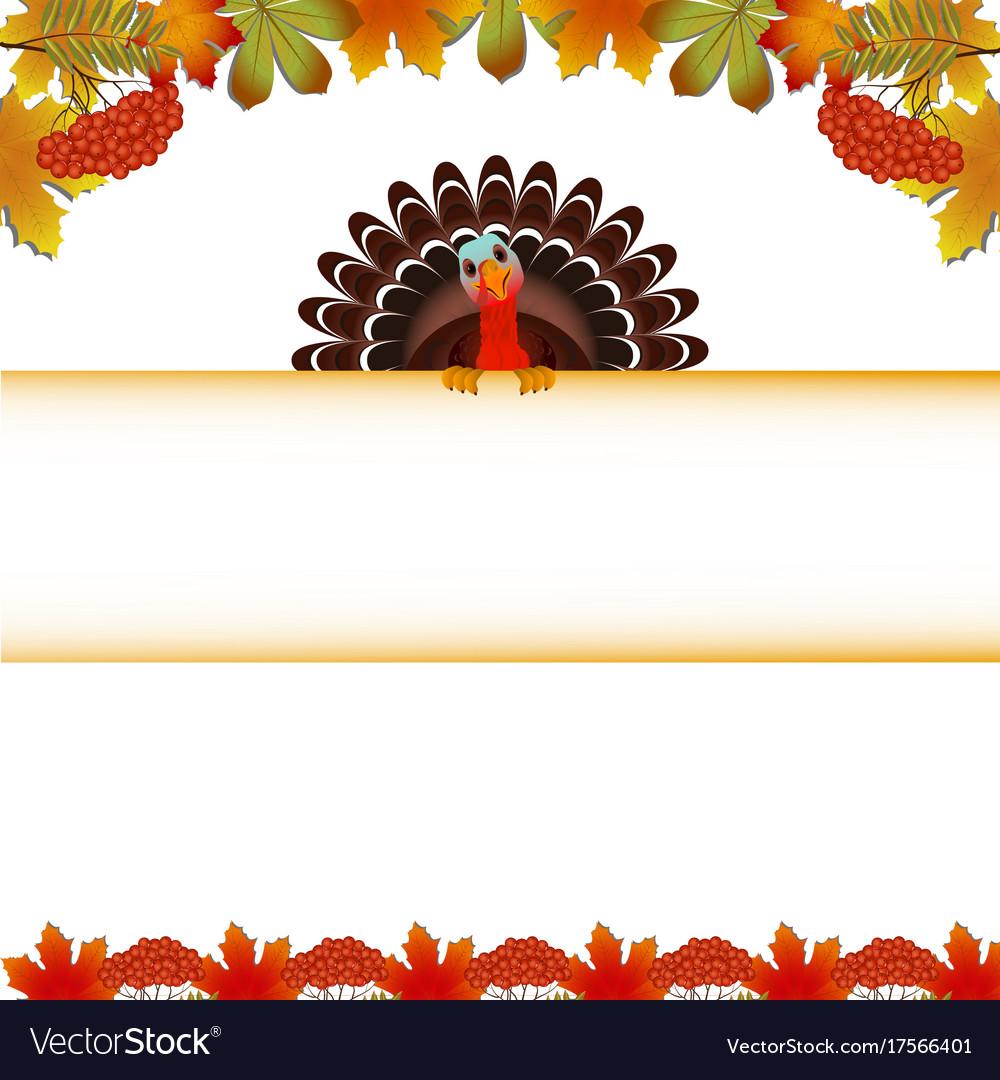 Turkey bird for happy thanksgiving celebration