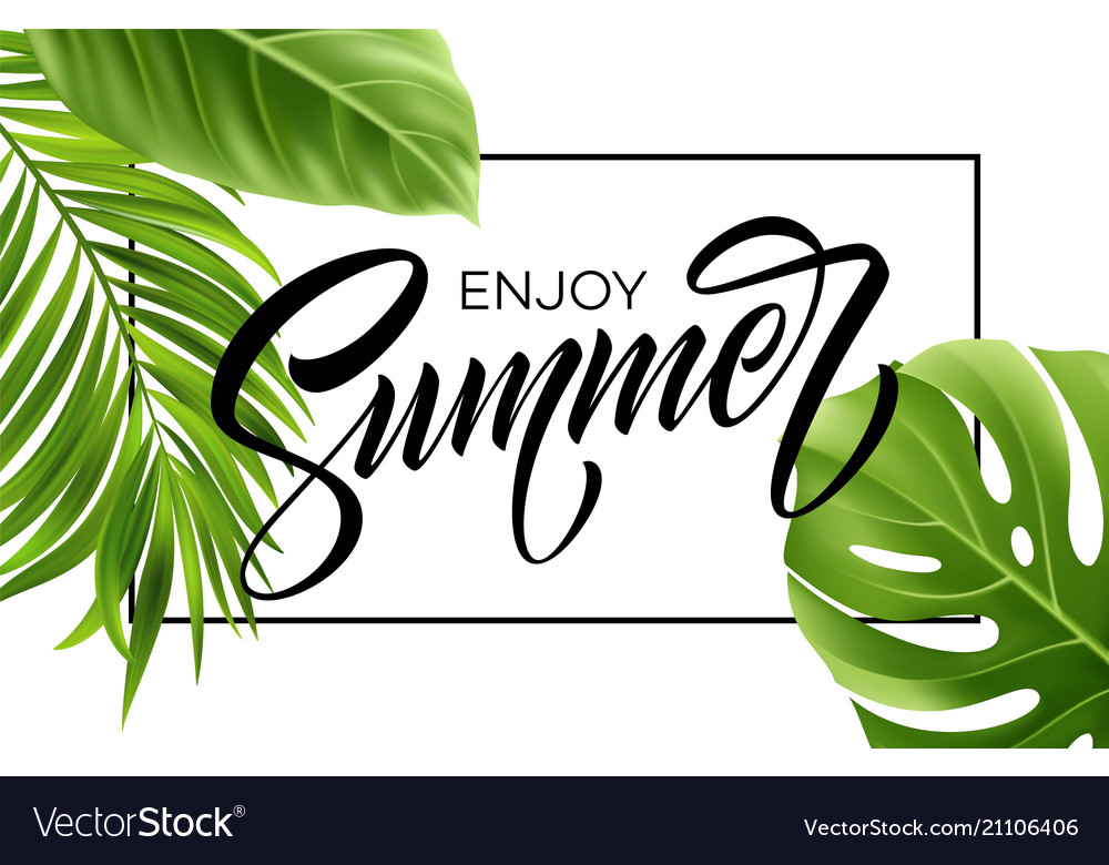 Summer poster with tropical palm leaf and