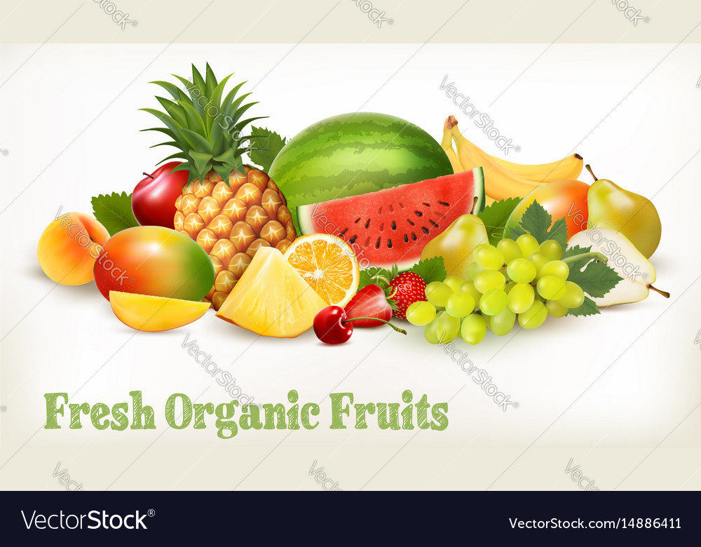 Food background with fresh colorful fruits vector image
