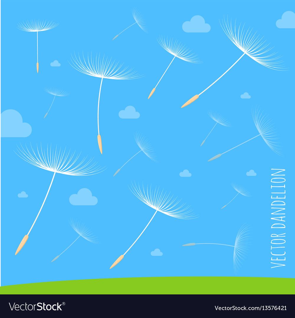 Dandelion seeds blowing away on the wind