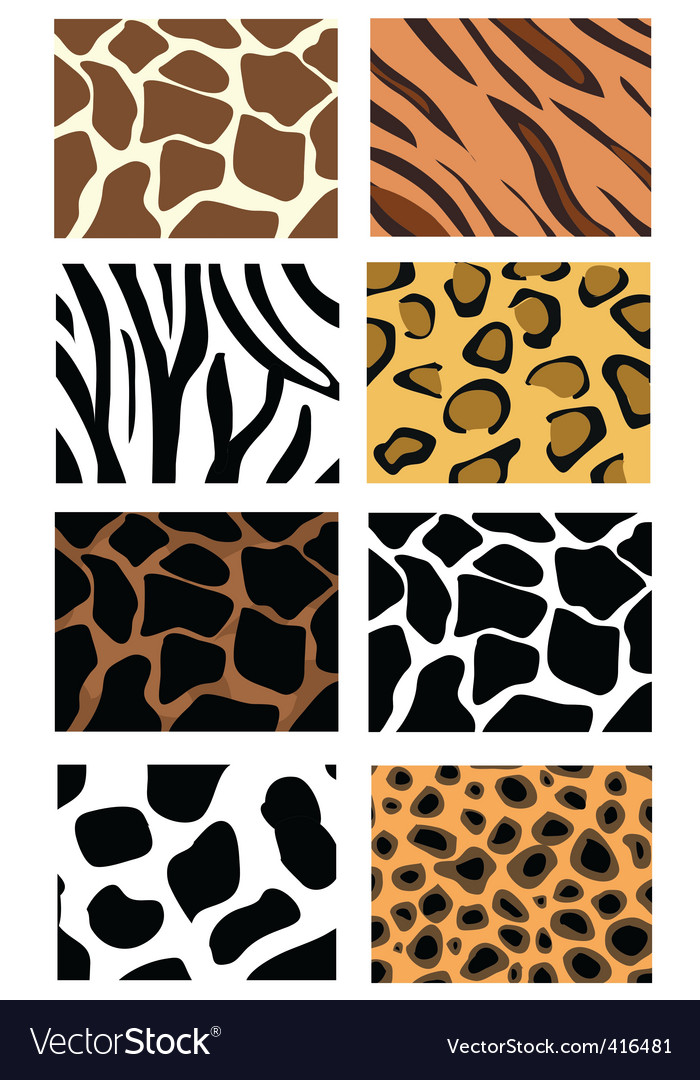Animal Print Patterns Royalty Free Vector Image