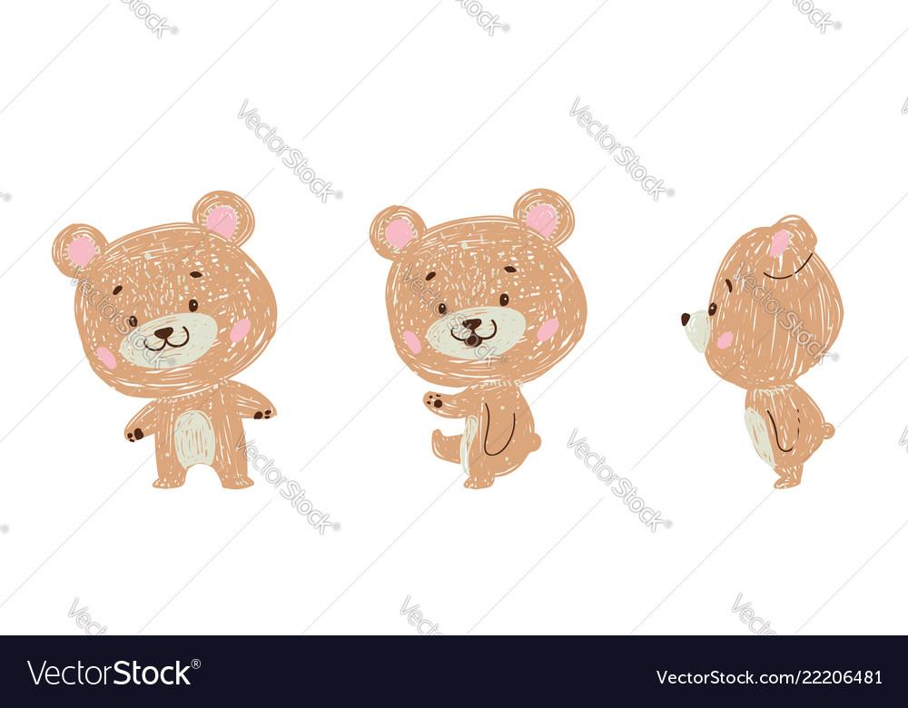 Set of bear