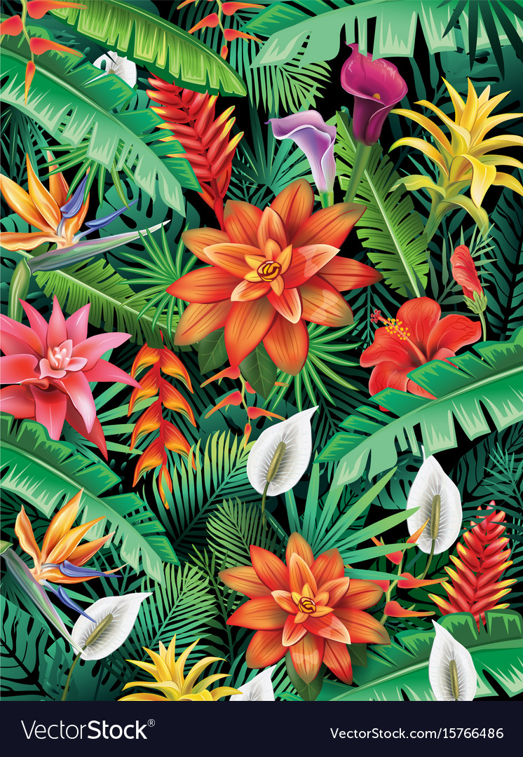 Background from tropical flowers vector image