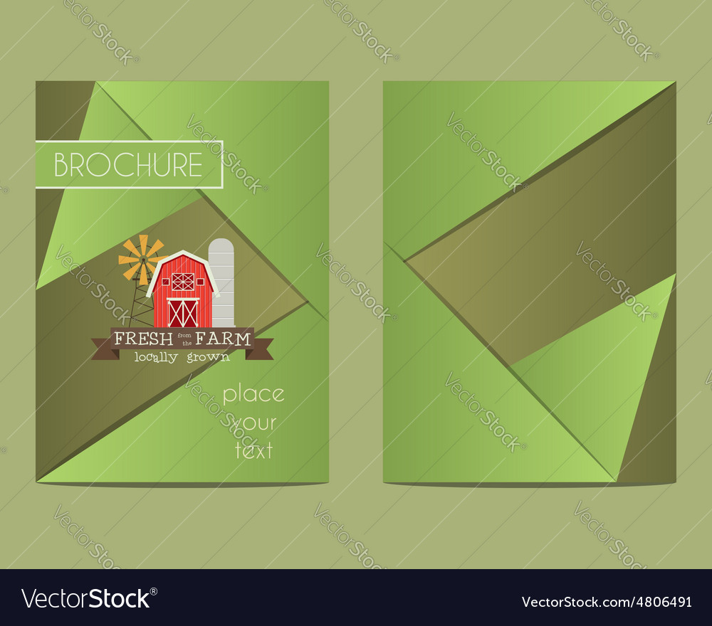 Brochure and flyer a4 size design template with