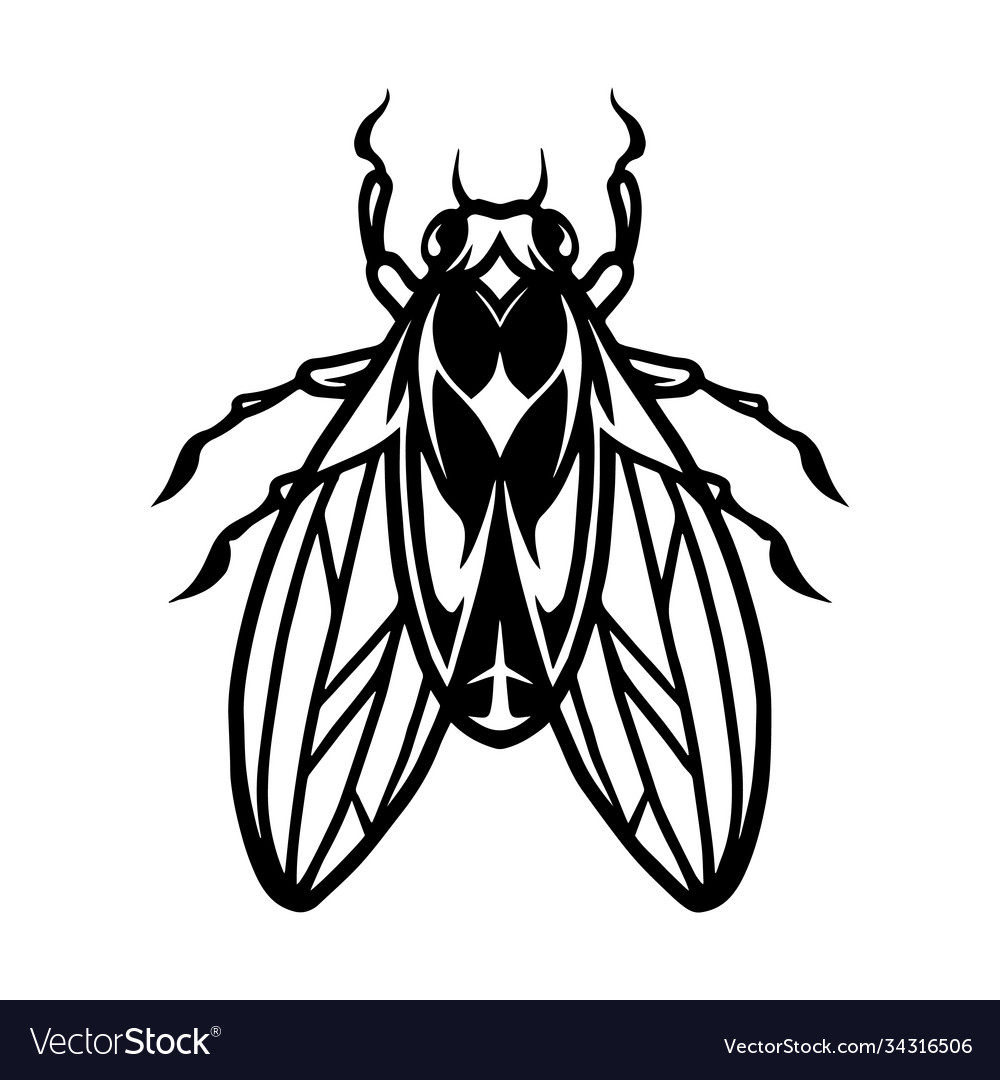 Fly insect tattoo template