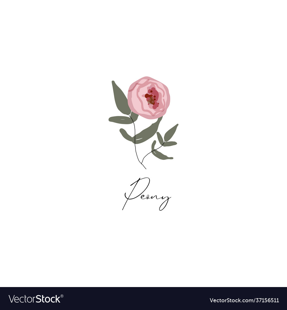 Delicate peony branch flower cute hand drawn
