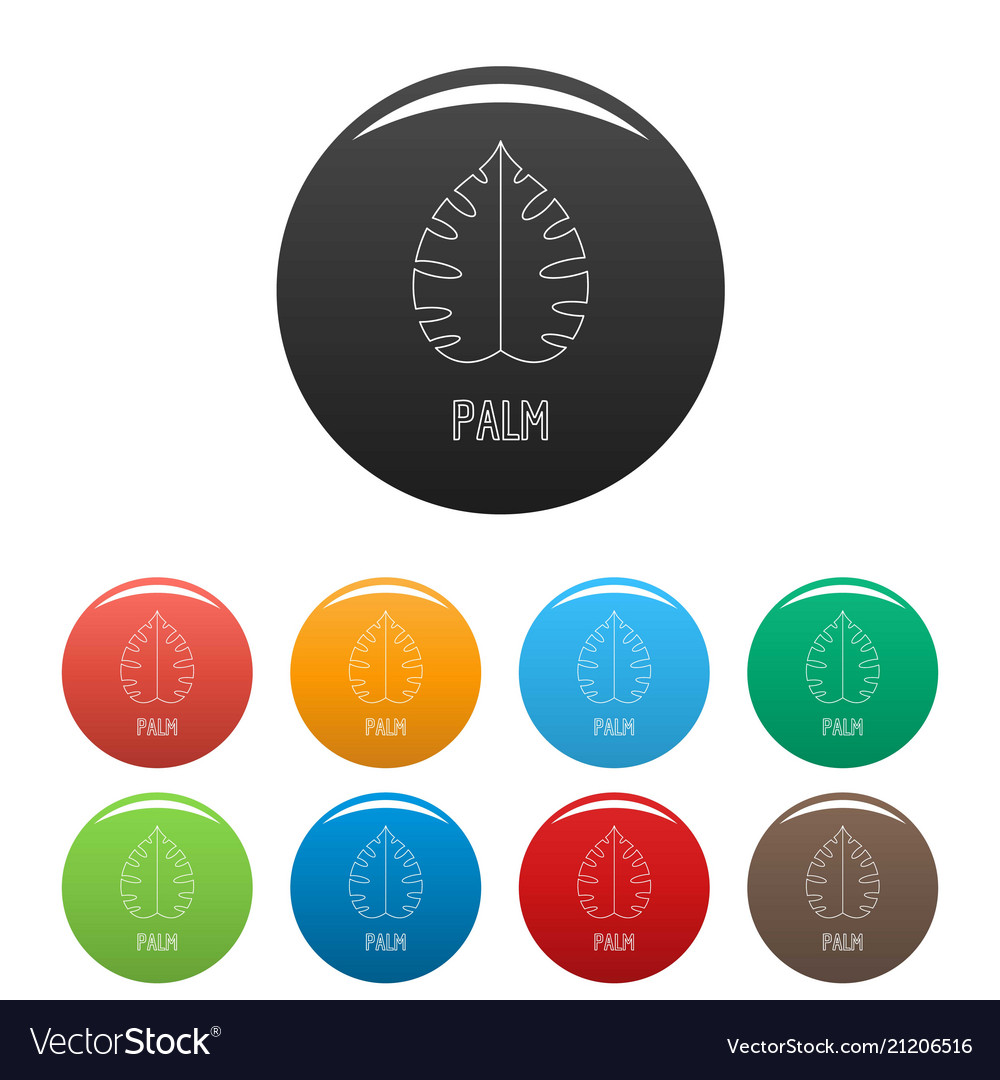 Palm leaf icons set color