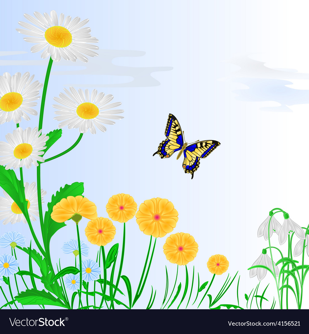 Spring Flowers And Butterfly Blue Background Vector Image