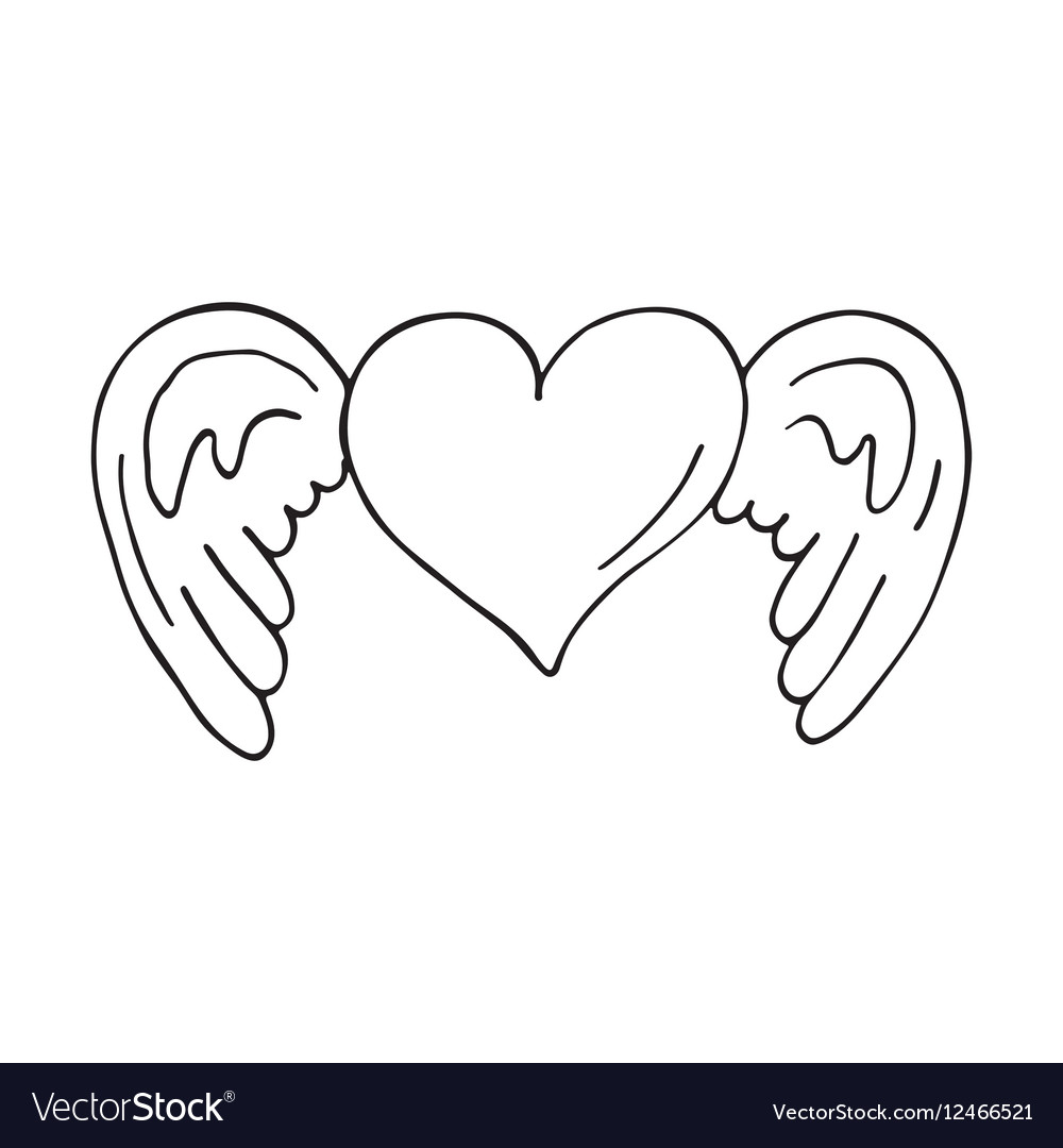 Valentines heart with wings vector image