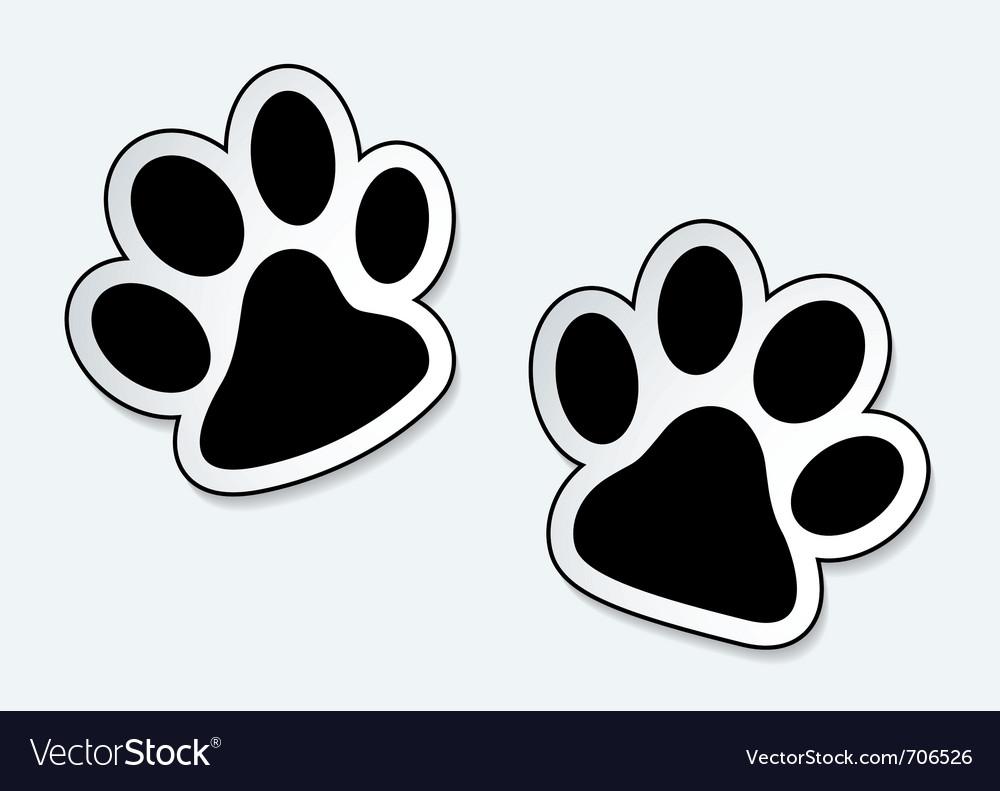 Animal paw prints vector image