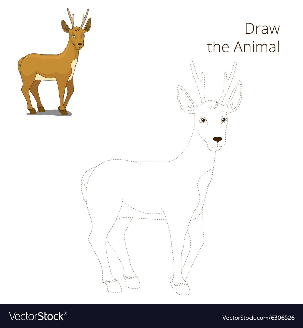 Draw The Forest Animal Roe Deer Cartoon Royalty Free Vector