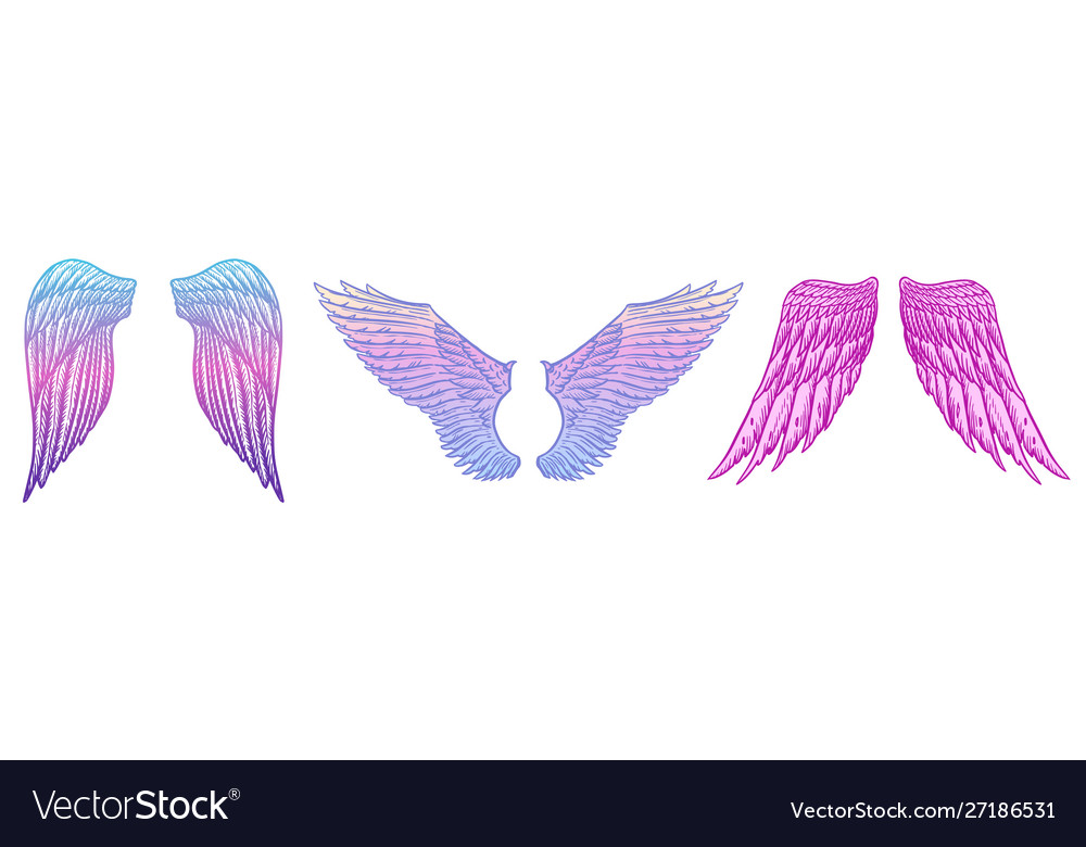 Angel wings in vintage style template for tattoo