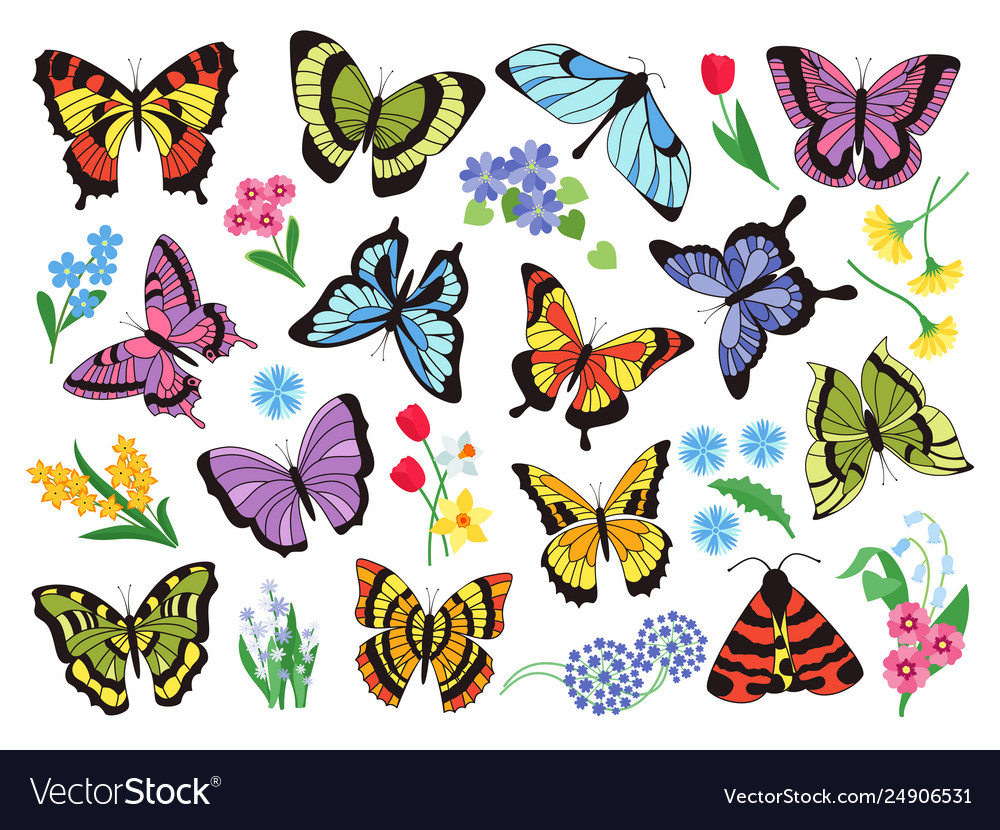 Colored butterflies hand drawn simple collection