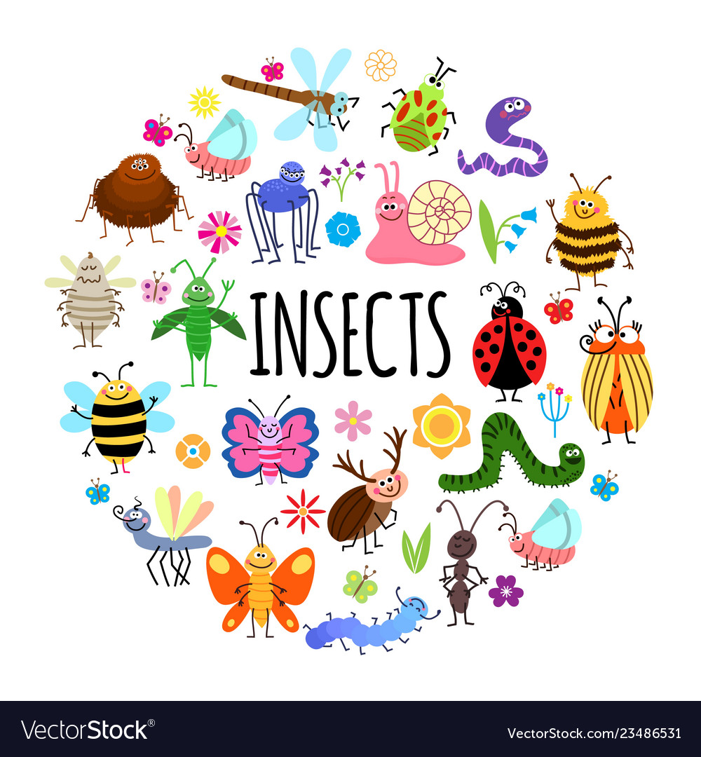 Flat funny insects round concept