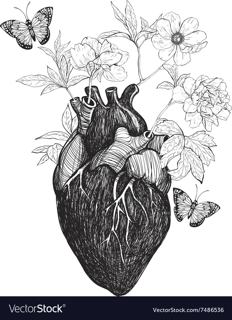 Human Anatomical Heart Whith Flowers Royalty Free Vector