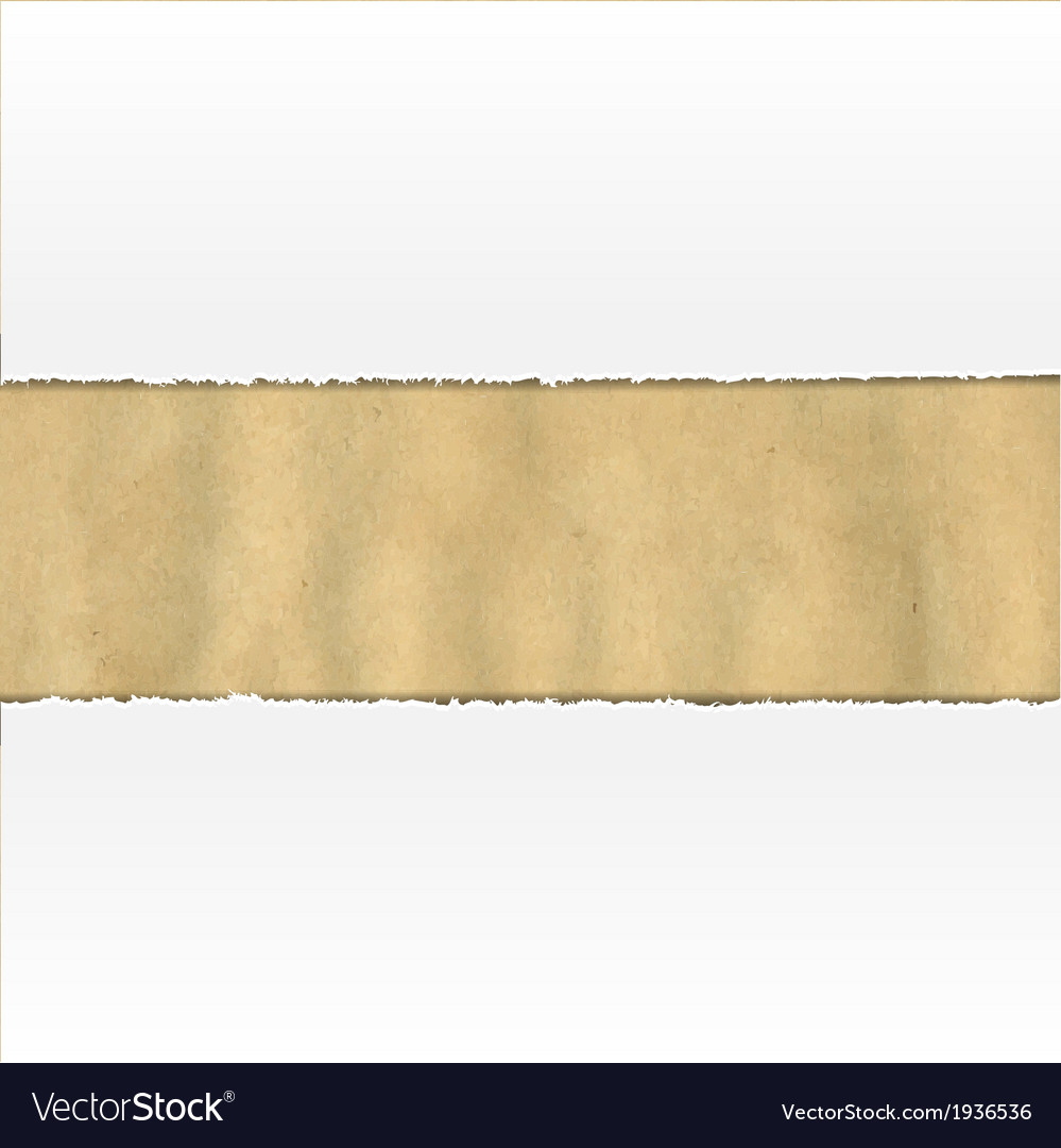 Old Ripped Paper With White Paper vector image