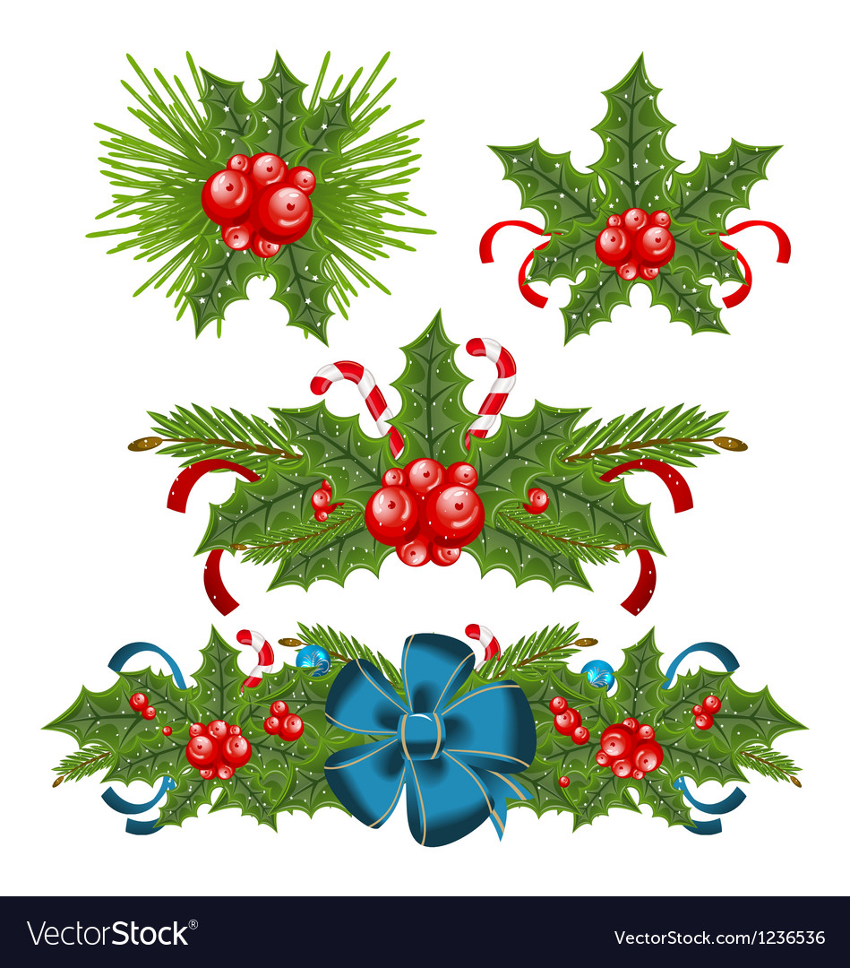 set holly berry sprigs for christmas decorations vector image - Christmas Holly Decorations