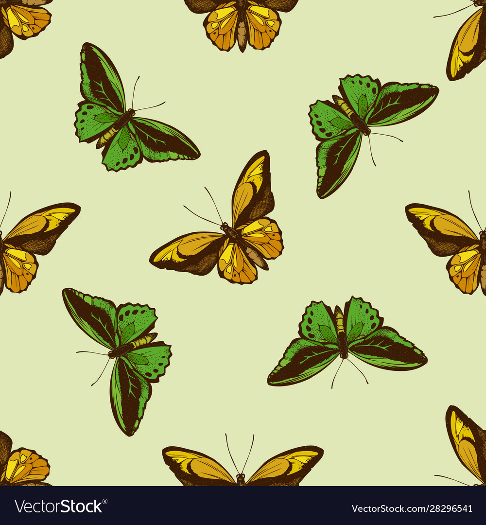 Seamless pattern with hand drawn colored