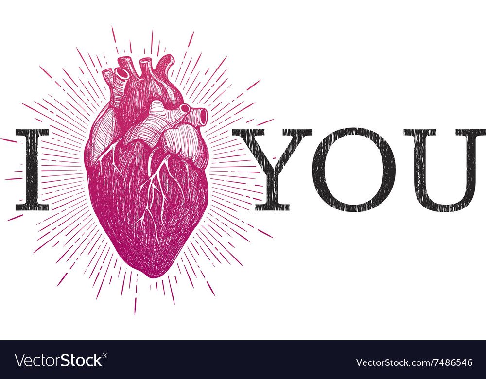 I Love You with human anatomical heart Royalty Free Vector