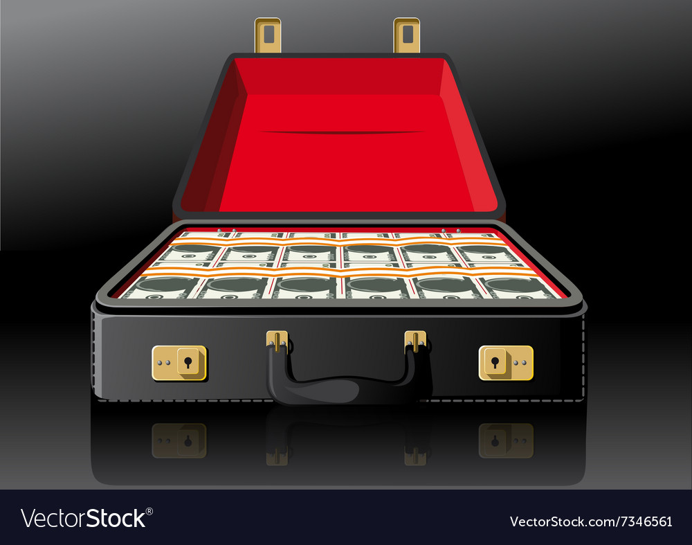 Open suitcase with dollars vector image