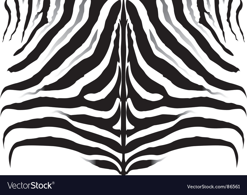 wallpaper zebra stripes. Rf zebra stripe image bank