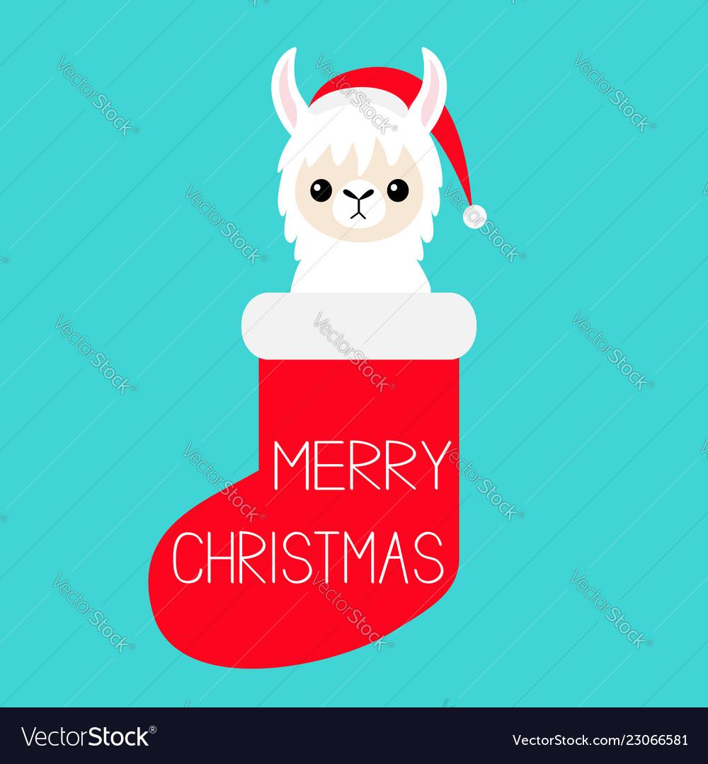 Llama Christmas.Merry Christmas Llama Alpaca Baby Face In Red