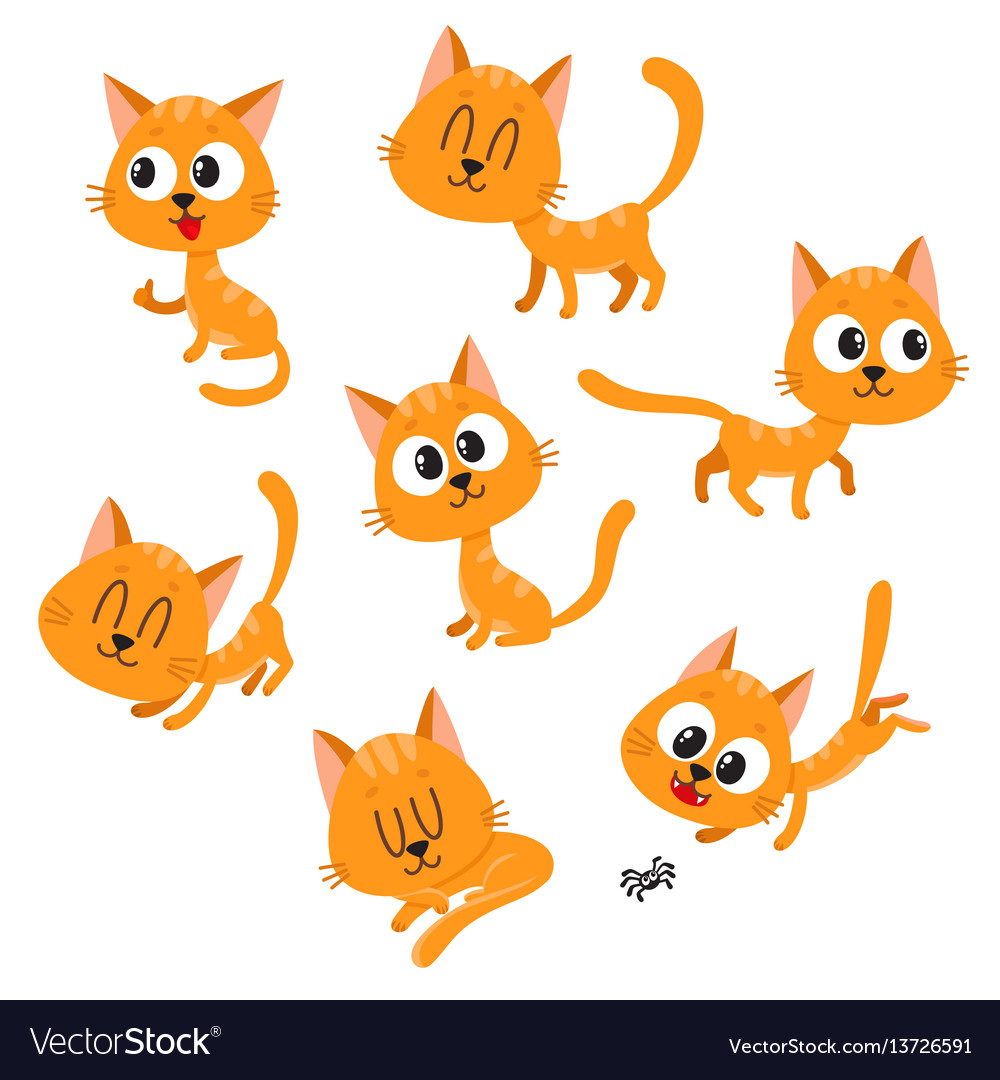 Cute and funny red cat character showing different