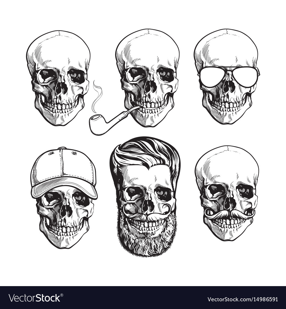 Human Skull Bones With Sunglasses Beard Royalty Free Vector