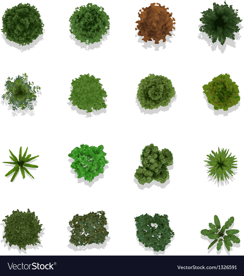 Trees Top View For Landscape Royalty Free Vector Image
