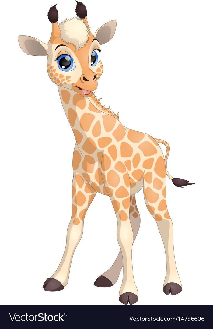 Funny little giraffe vector image