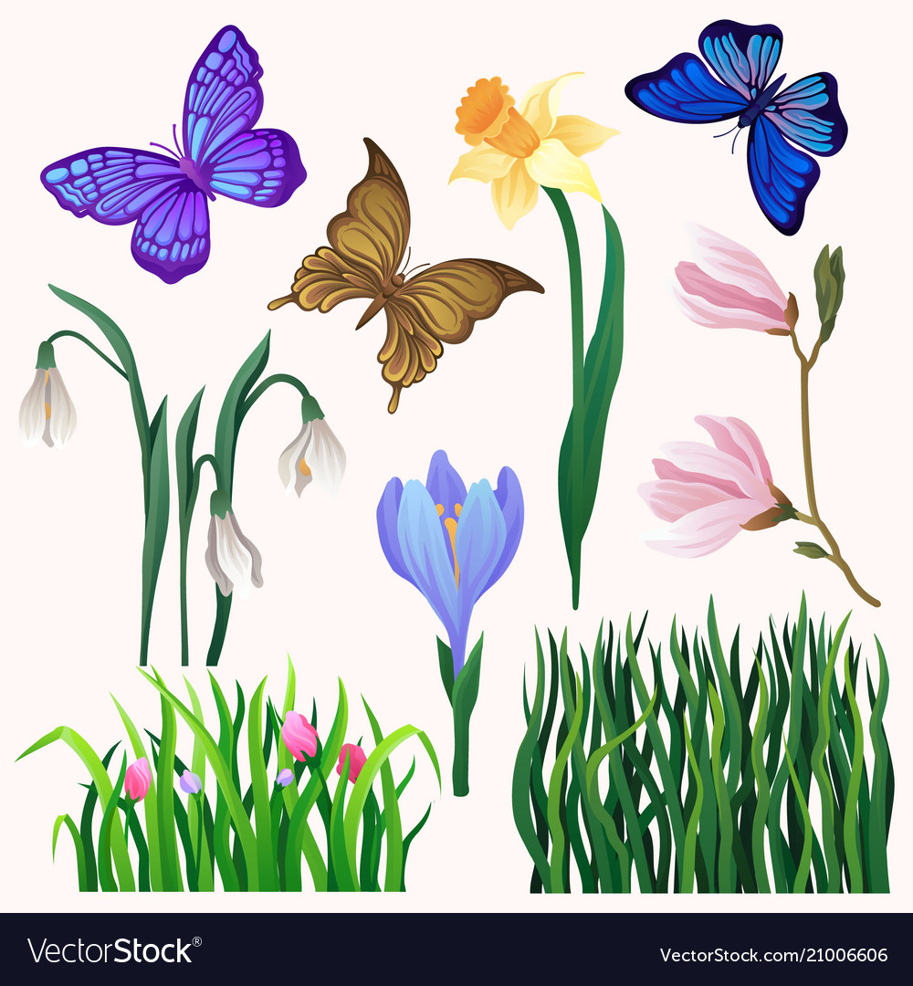 Set of bright-colored blooming flowers and