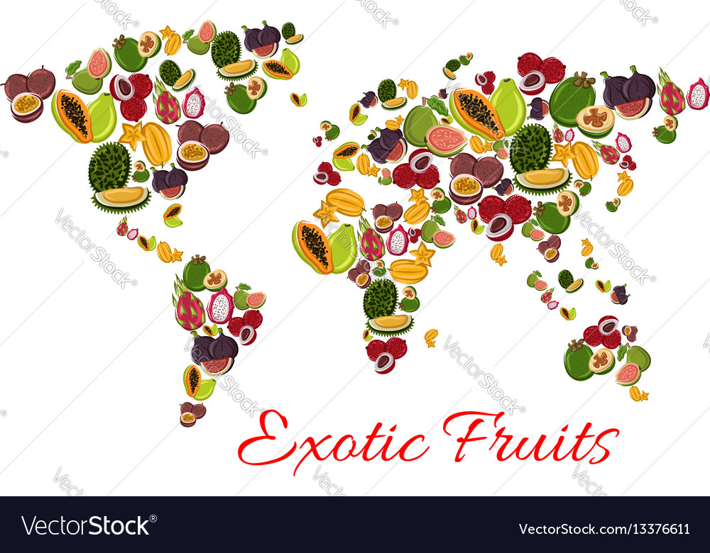Exotic fruit world map poster for food design vector image gumiabroncs Gallery