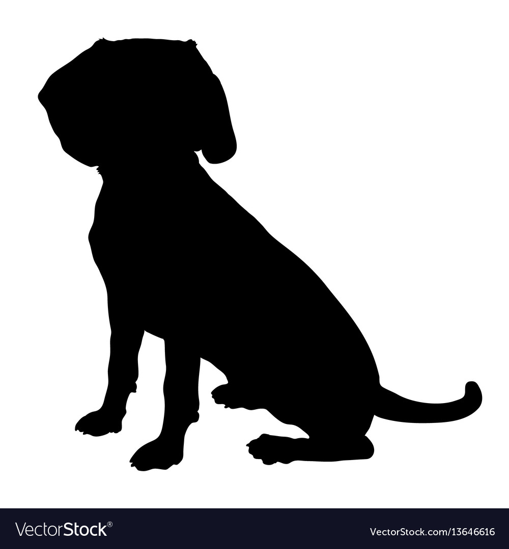 Beagle silhouette vector image