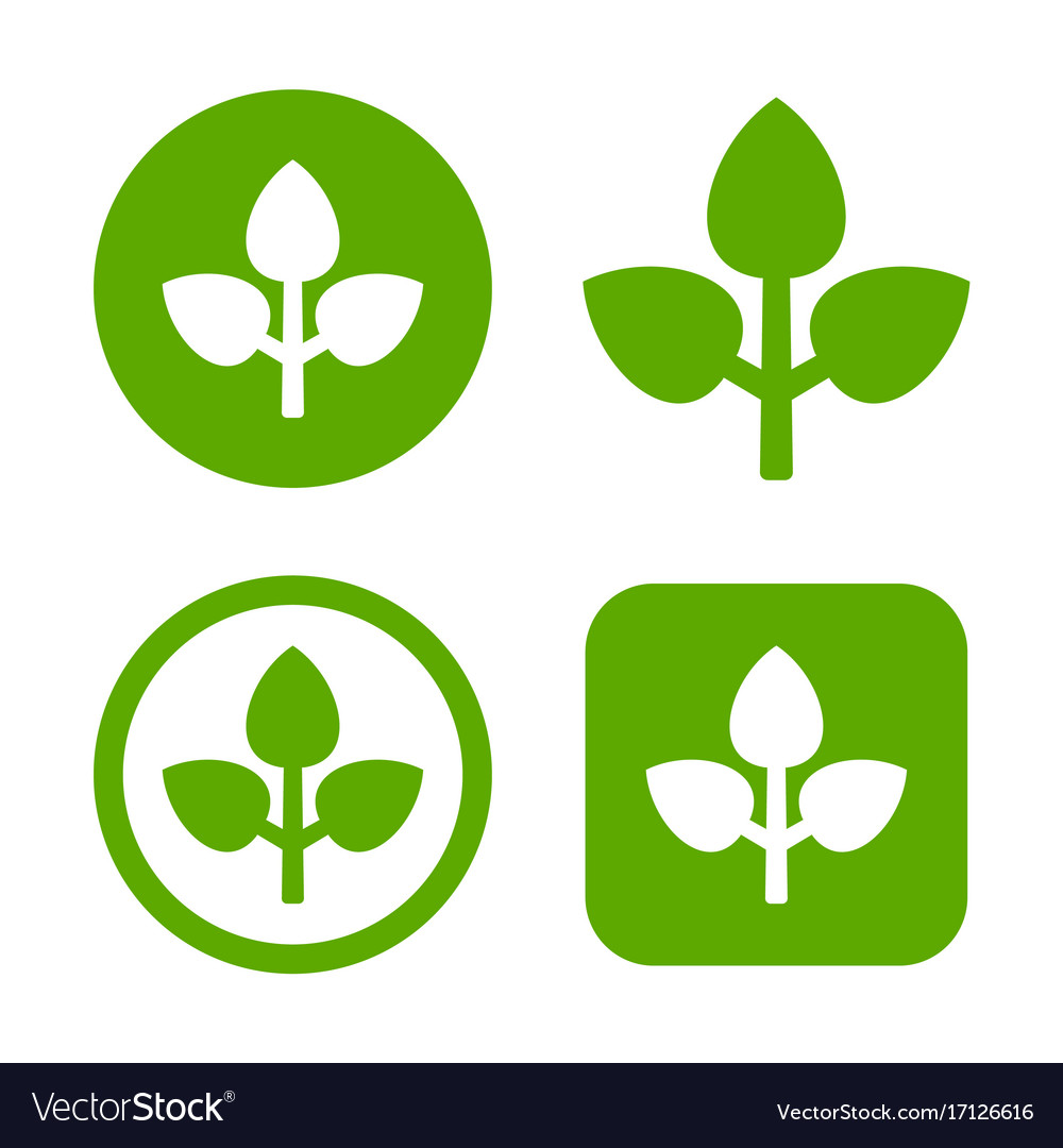 Green leaf logo set eco sign