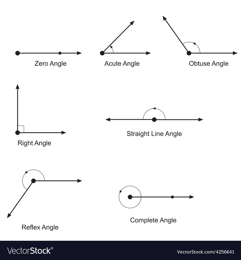 Types Of Angles Royalty Free Vector Image Vectorstock