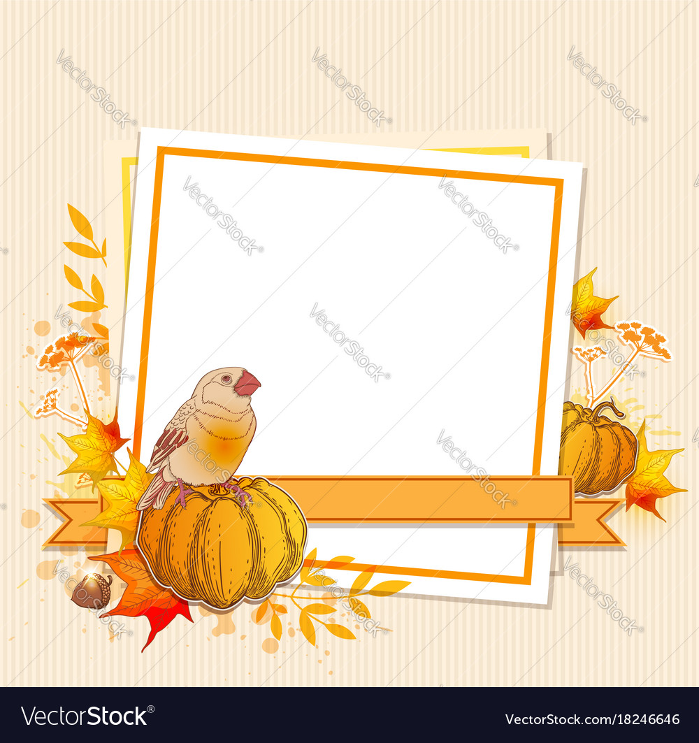 Background with pumpkins and bird
