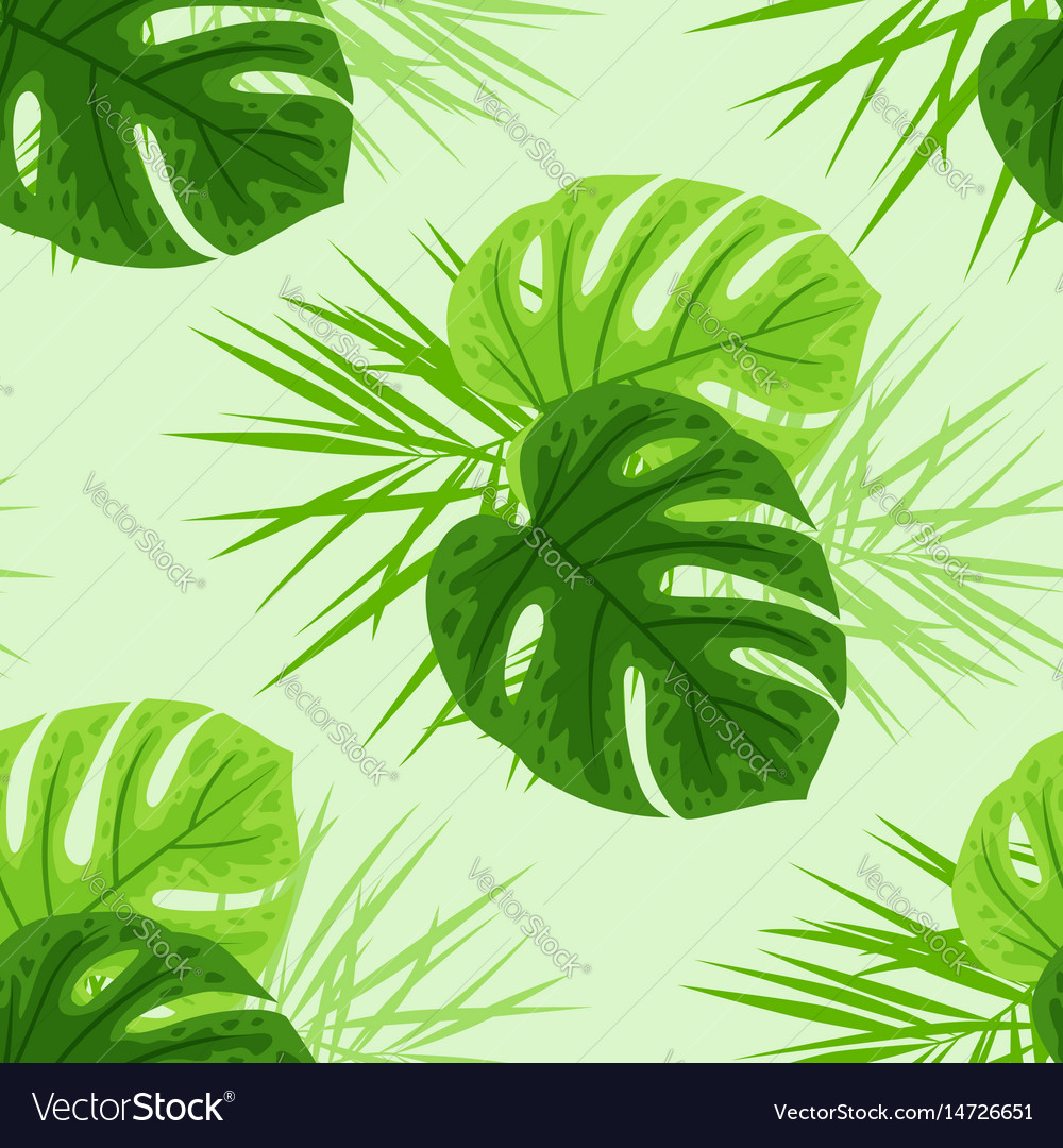 Green Tropical Leaves Royalty Free Vector Image Tropical rainforest, luxuriant forest found in wet tropical uplands and lowlands near the equator. green tropical leaves royalty free vector image