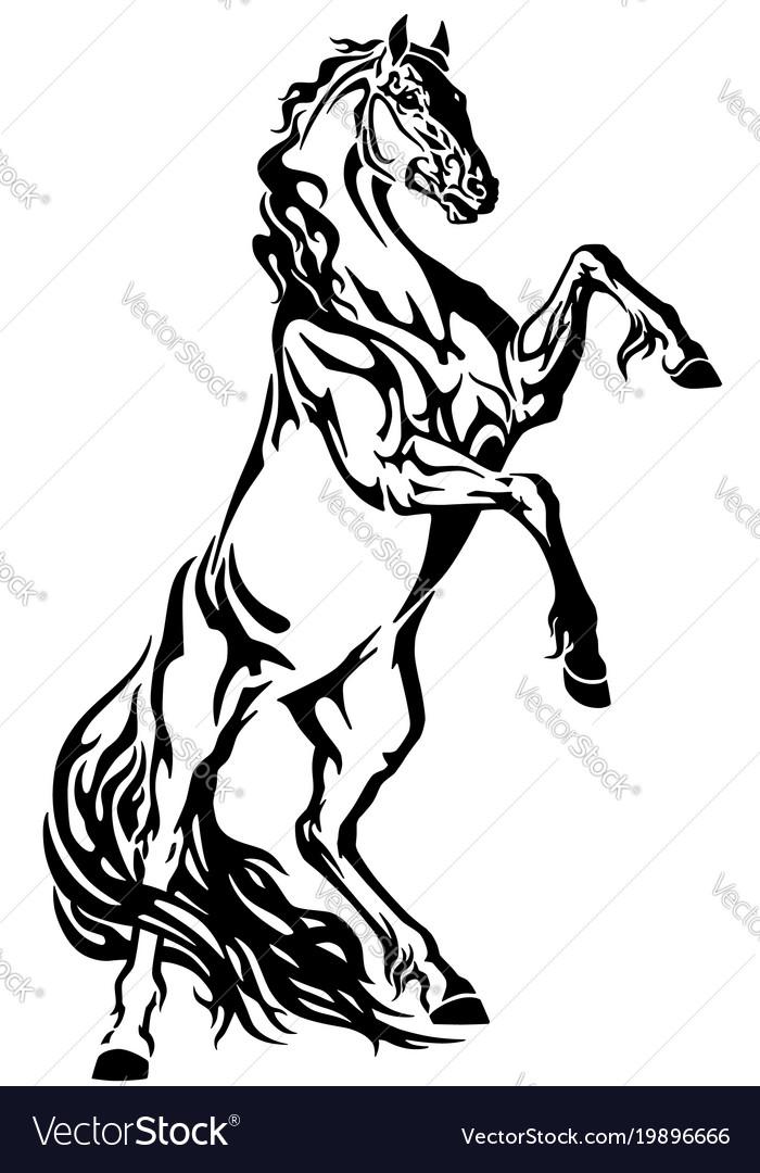 Tribal Horse Tattoo Drawing Elegant Arts Tattoo