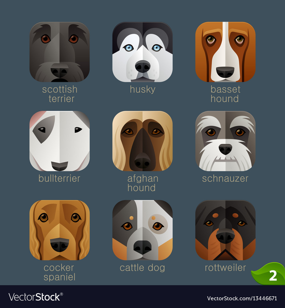 Animal faces for app icons-dogs set 1
