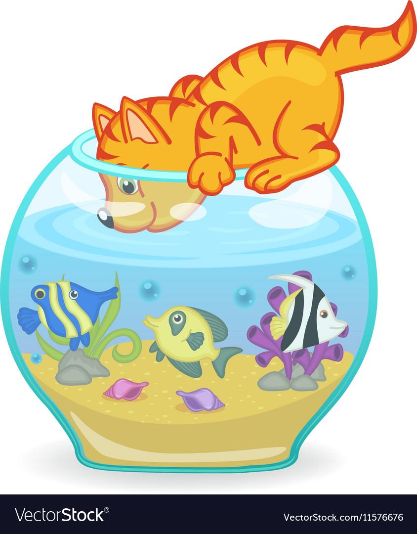 Cat looking into aquarium with fish vector image