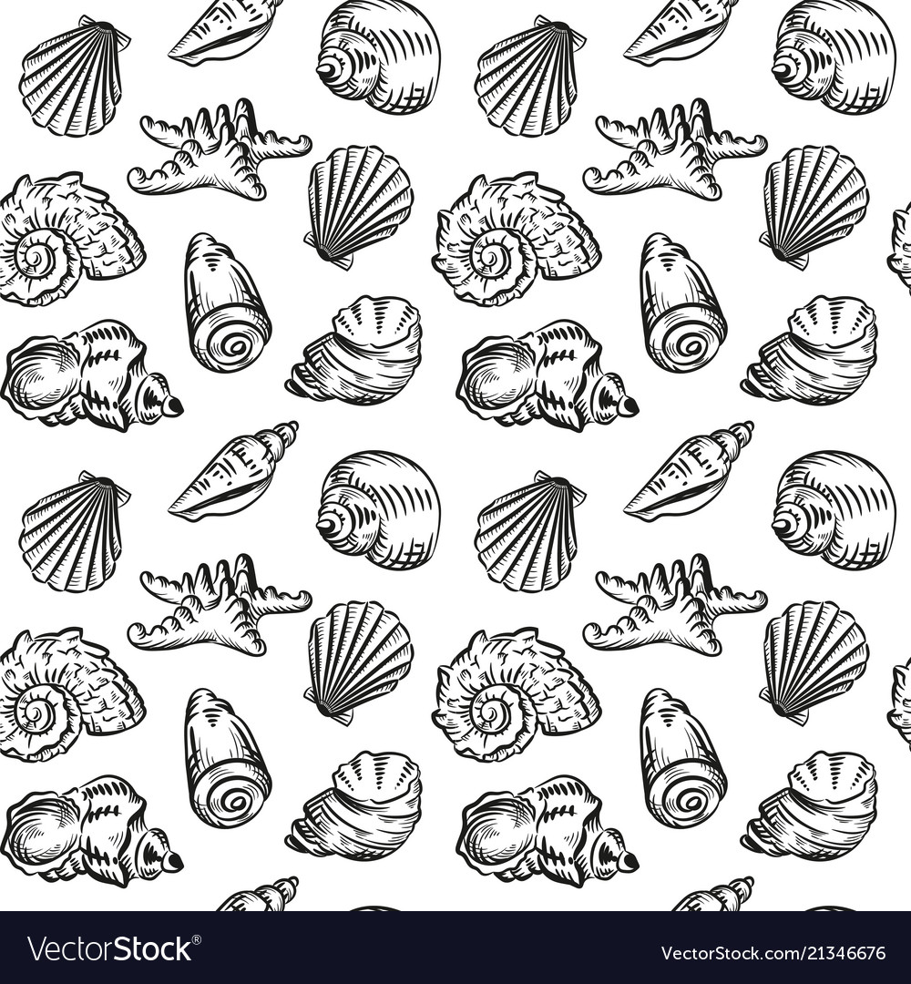 Sea shells hand drawn sketch style pattern