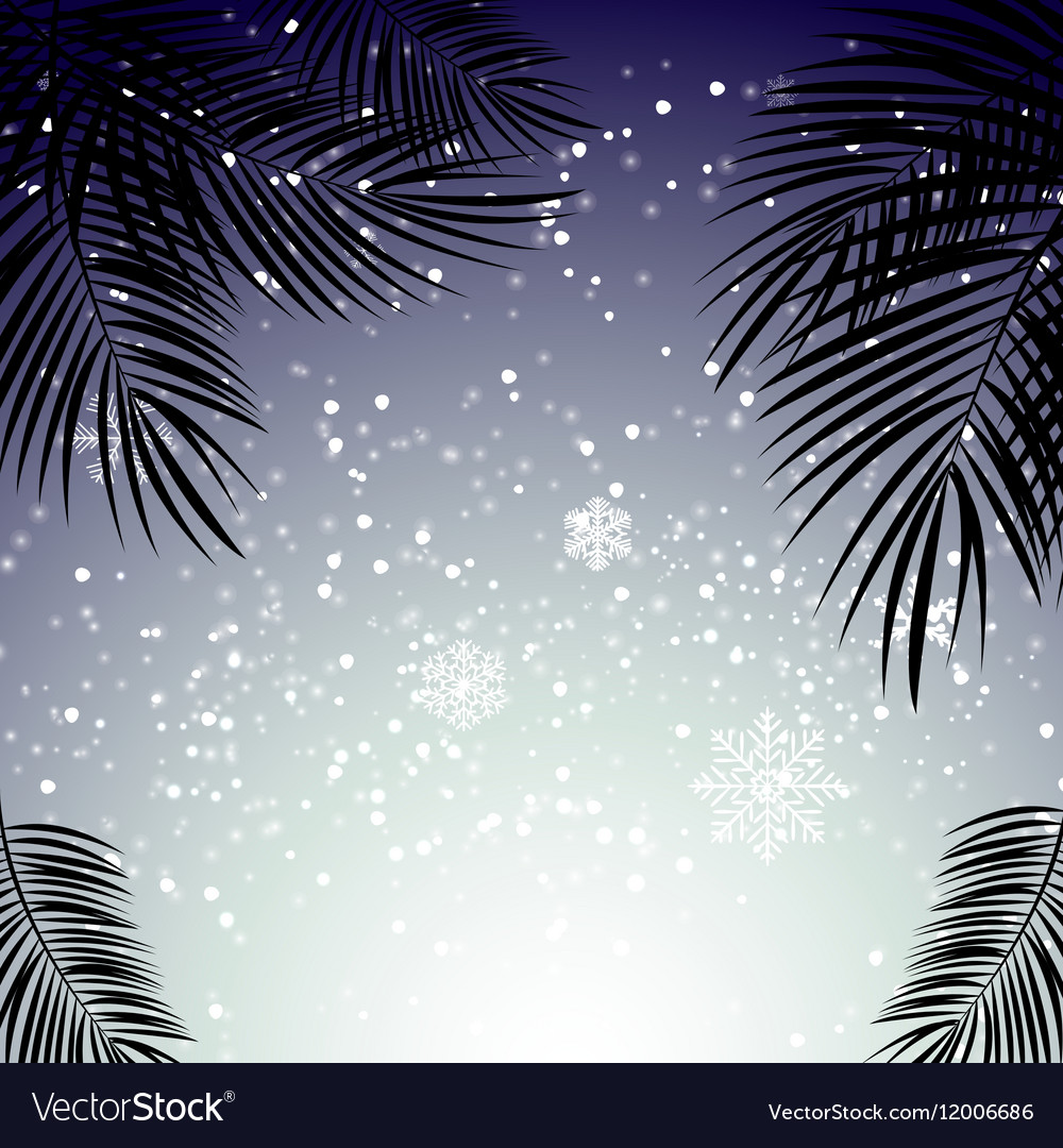 Christmas and New Year with palm leaves in the vector image