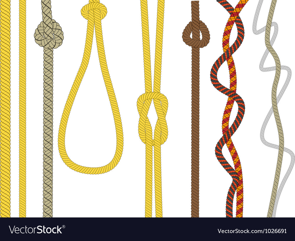 Different size and color rope