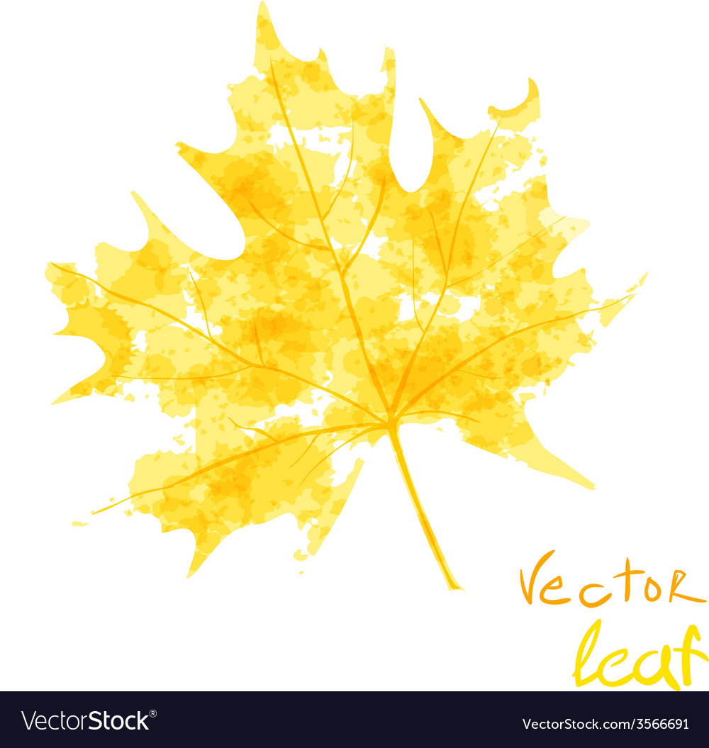 Watercolor orange leaf design element autumn vector image