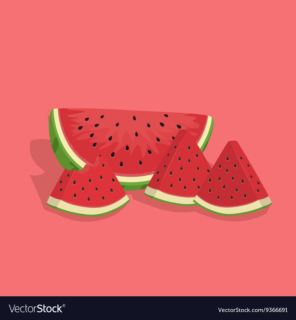 Watermelon Fruit Slice Bite