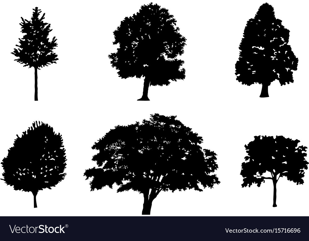 Tree collection silhouette