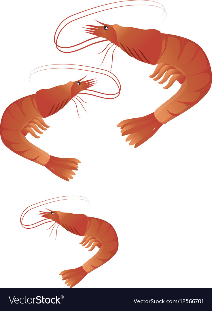 Lobster seafood menu icon vector image